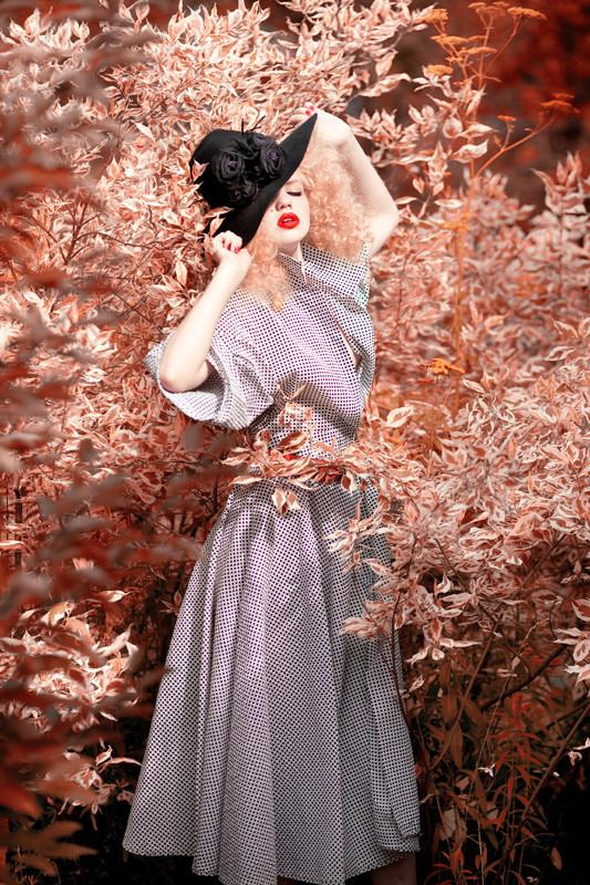 Belle Rosemonde. Изображение № 3.
