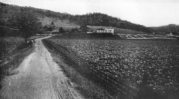 Фотографии ферм начала XX века. Изображение № 6.