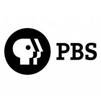 Что такое общественное  телевидение в России и мире. Изображение № 2.