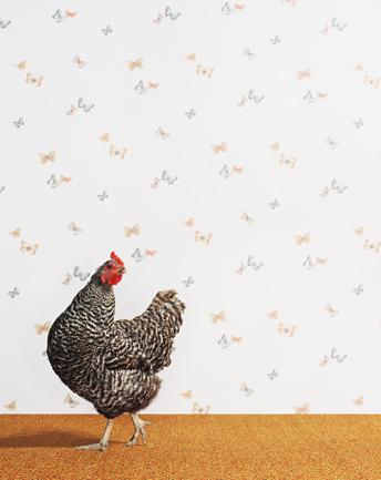 Животноводство отCatherine Ledner. Изображение № 20.