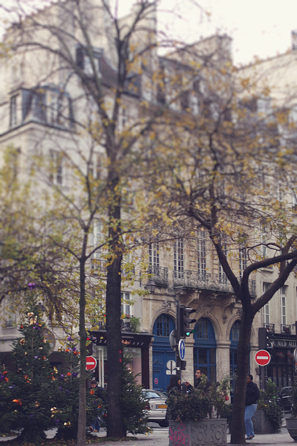 PARIS в декабре. Изображение № 44.