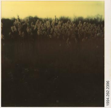 20 фотоальбомов со снимками «Полароид». Изображение №297.