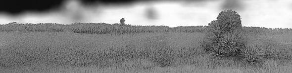 Michael Oliveri. Крошечные пейзажи невидимых миров. Изображение № 3.