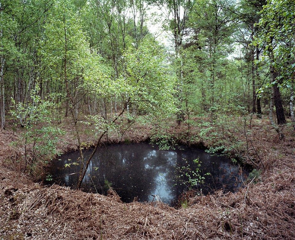 Галерея: как война изменила леса Германии. Изображение № 10.