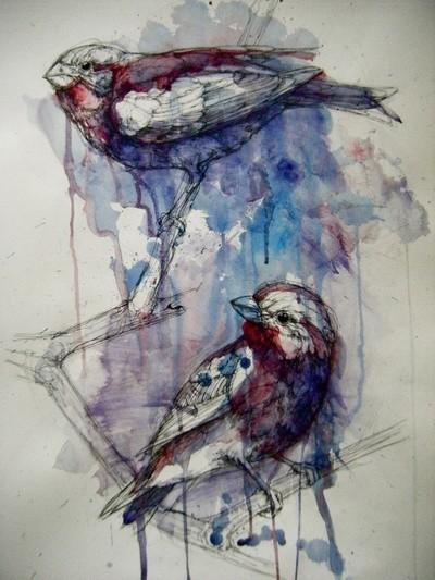 Птицы Abby Diamond. Изображение № 4.