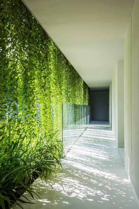 Архитектура дня: белый спа-центр во Вьетнаме с растениями на фасаде. Изображение № 31.