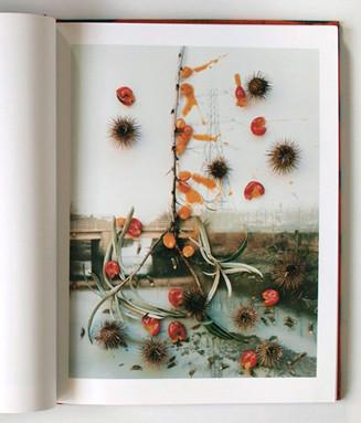 7 альбомов об абстрактной фотографии. Изображение № 57.