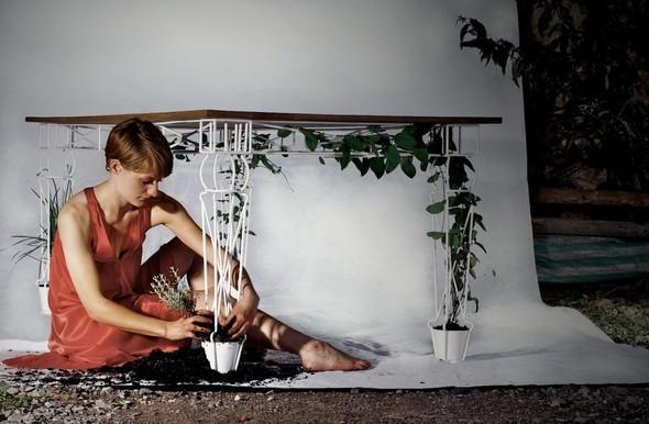 Огород под столом. Изображение № 1.
