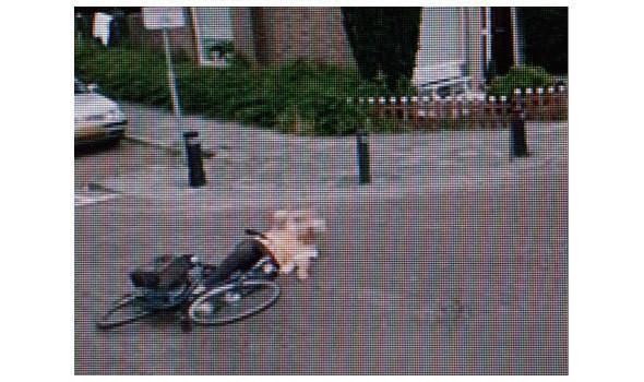 Изображение 2. Специальная награда World Press Photo 2010 за снимки через Google Street View.. Изображение № 2.