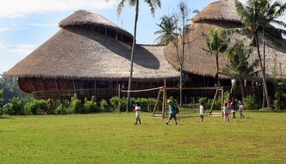 Добро пожаловать в бамбуковый рай!. Изображение № 1.