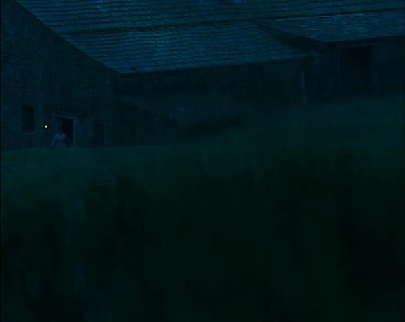 Прорыв: «Грозовой перевал» Андреа Арнольд. Изображение № 7.