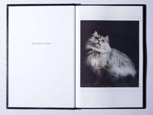Кошка сама по себе. Изображение № 7.