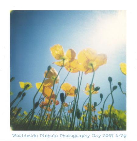 Изображение 6. Worldwide Pinhole Photography Day.. Изображение № 11.