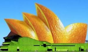 Почему апельсин, ане банан?. Изображение № 3.