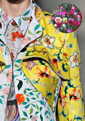 Цветной: 35 принтов из коллекций FW 2011. Изображение № 51.