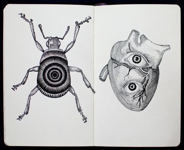 Чёрные ручки, молескин. Изображение №8.