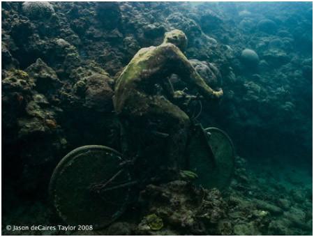 Подводная галерея. Изображение № 13.