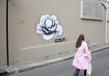 «Месть природы» наулицах Парижа. Изображение № 1.