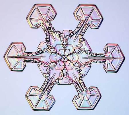 Снежинки – временные произведения искусства. Изображение № 7.