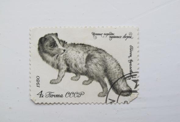 Советский дизайн. Изображение № 5.