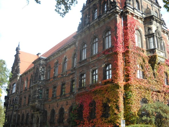 Образование в Польше. Личный опыт. Интервью.. Изображение № 1.