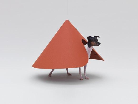 В Калифорнии открылась выставка «Архитектура для собак». Изображение № 1.