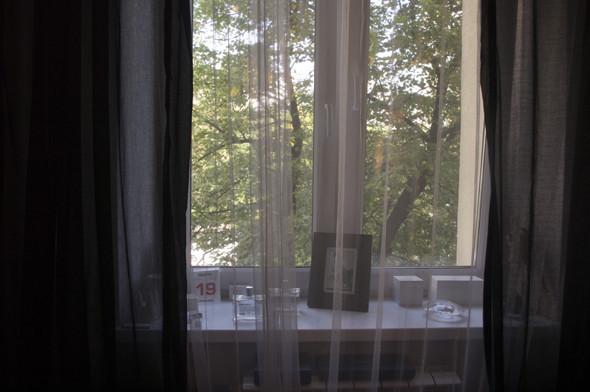 Квартира N5: Елисей Косцов, фэшн-директор Marie Claire. Изображение № 4.