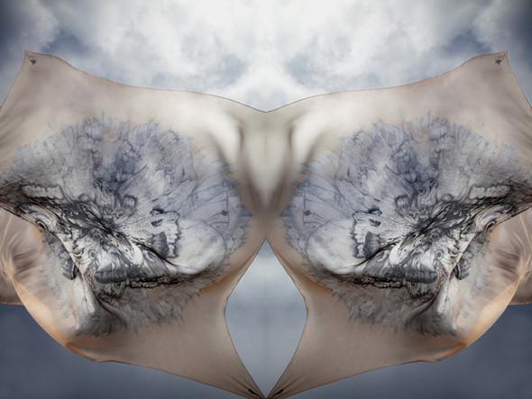 Изображение 5. Лукбук: платки Alexander McQueen SS 2011.. Изображение № 5.