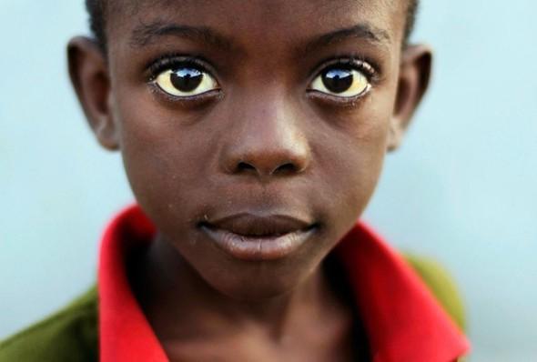 Разрушать природе на Гаити уже просто нечего!. Изображение № 41.