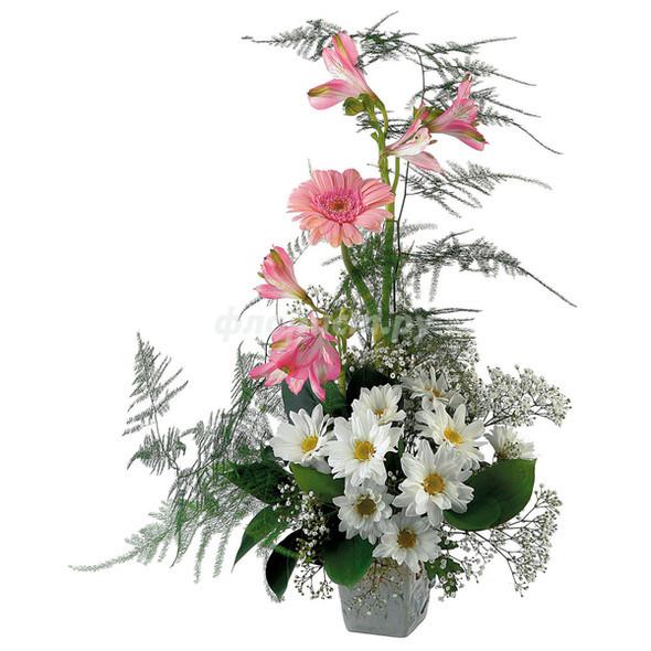 Изображение 7. О многогранной пользе цветов в интерьере.. Изображение № 6.