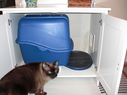 IKEA - интерьер для котов. Изображение № 17.
