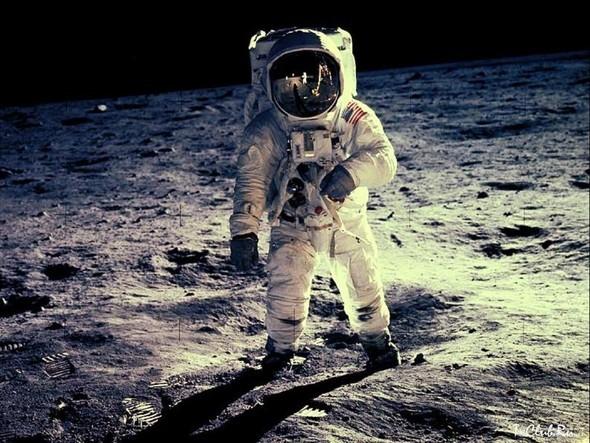 Распродажа Луны. Изображение № 1.