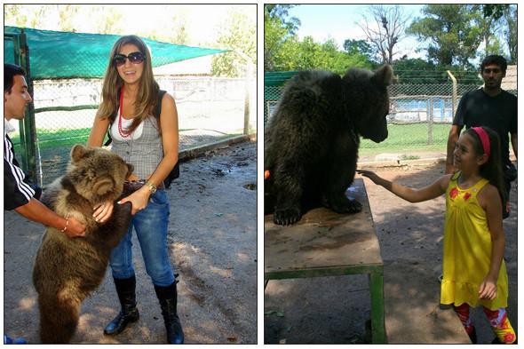 Lujan Zoo. Изображение № 13.