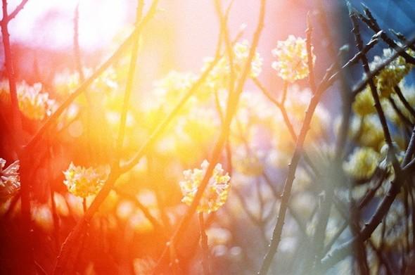 Li Hui Photography. Изображение № 12.