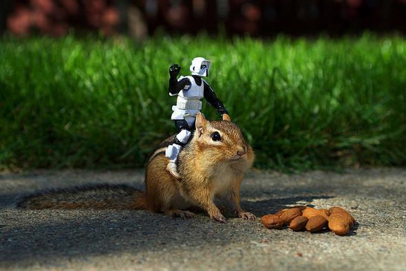 Крис Маквей и его игрушечный мир. Изображение № 7.