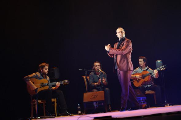 1-й Российский фестиваль фламенко. Изображение № 28.