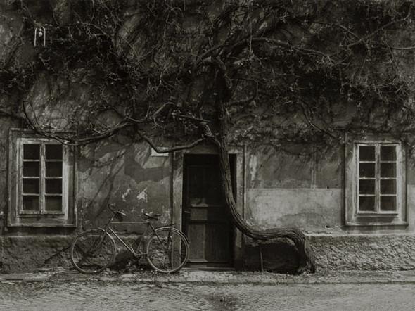 Изображение 3. По старому новые кадры от Stanko Abadic.. Изображение № 3.