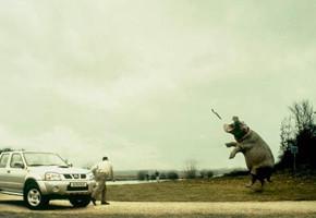 В мире животных: Герои «Мадагаскара» в мемах, рекламе и видеороликах. Изображение № 20.