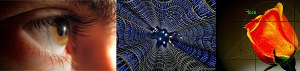 Изображение 2. Wikipedia вербует настоящих ученых.. Изображение № 2.