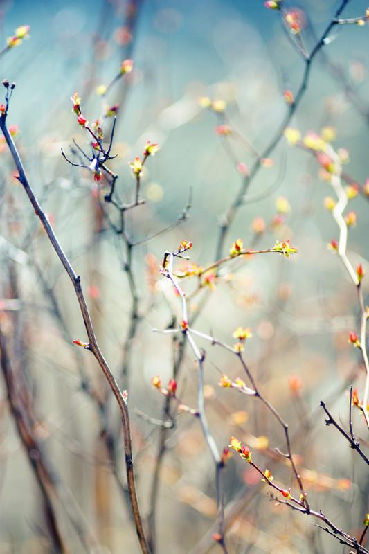 """""""Наступает"""". Фотограф Мария Гомолова. Изображение № 11."""