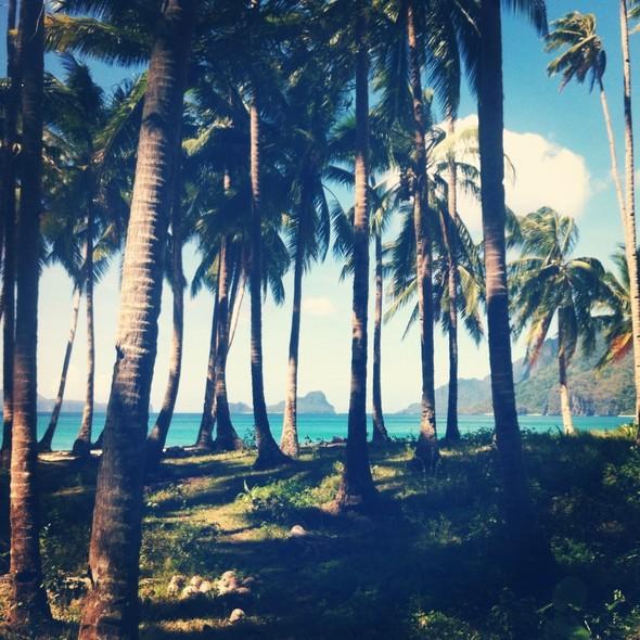 TravelWord: Даша Малыгина о Филиппинах. Изображение № 24.