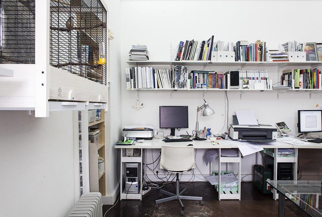 Экзотические птицы и старинные паркеты в архитектурном бюро «Практика». Изображение № 23.