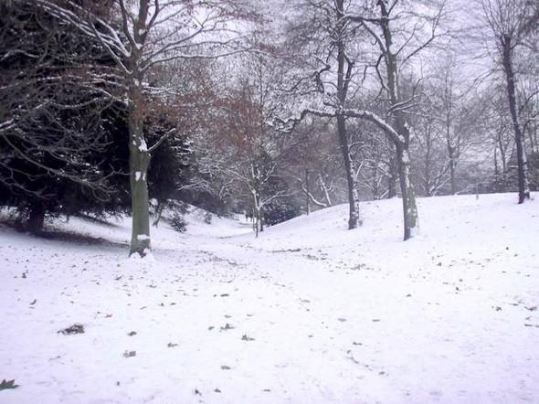 Изображение 1. Магическое шоу в снежном парке.. Изображение № 2.