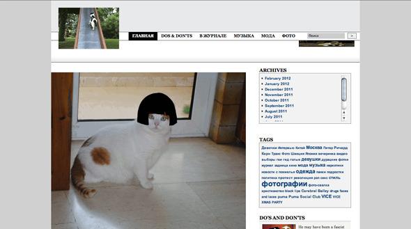 Котировка сайтов: Как заполнить любой сайт мигающими котами. Изображение №8.