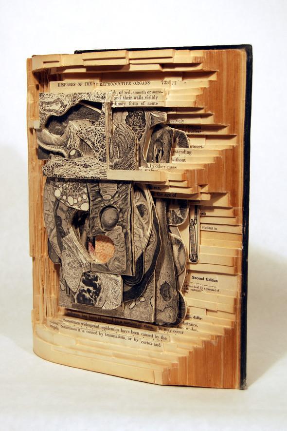 Book carving отБрайана Деттмера [Brian Dettmer]. Изображение № 3.