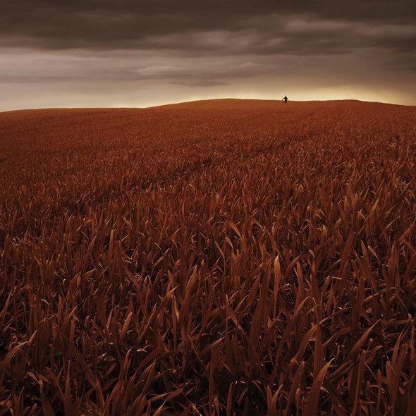 Одиночество, которое восхищает. Изображение № 11.