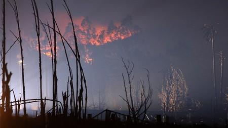 Пожары вКалифорнии. Изображение № 28.
