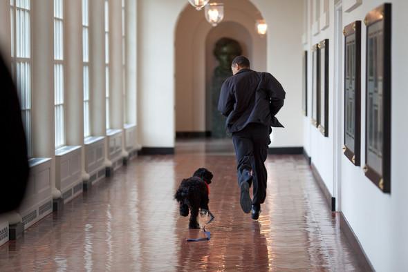 Flickr Белого Дома. Изображение № 10.