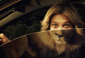 В мире животных: Герои «Мадагаскара» в мемах, рекламе и видеороликах. Изображение № 62.