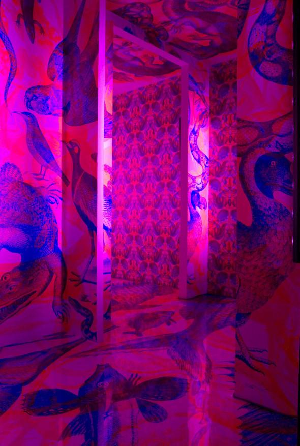 Сумашедший дом или RGB-обои. Изображение № 11.